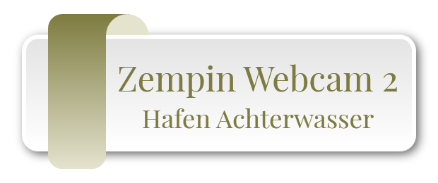 Zempin Webcam 2